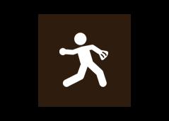 Rec Field Icon